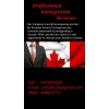 Professional Immigration Services