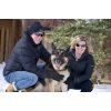 Семейное и Свадебное фото,  фото домашних животных
